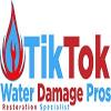 tiktokwaterdamagepro's profile picture